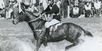 At his first Badminton, Mark and Southern Comfort were 45th after the dressage. But as one of only three inside the time on cross-country day, he was third going into the showjumping — and when When Lucinda Prior-Palmer and Helen Butler came unstuck in the final phase, Mark clinched the title.